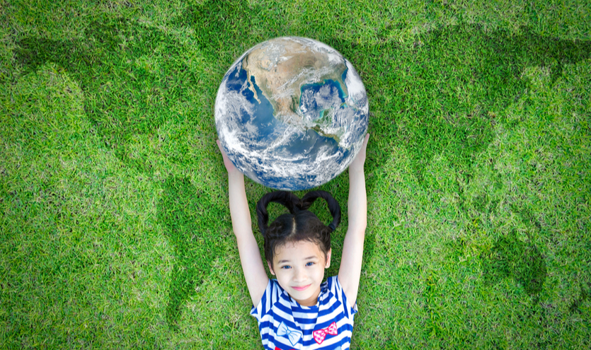 O desenvolvimento sustentável e o ensino: uma discussão necessária